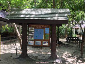 Cuti-Cuti Krabi Thailand1287