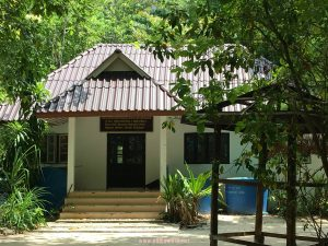 Cuti-Cuti Krabi Thailand1288