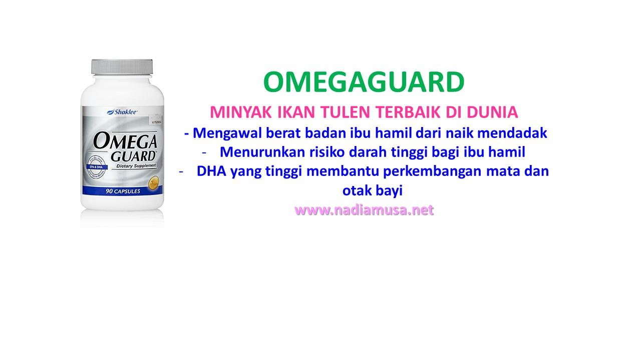 set-hamil-omegaguard